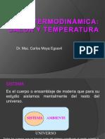 168352398 Termodinamica Para Medicina