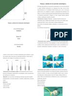 Biomateriales Odontológicos