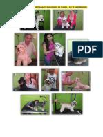 Curso pdf