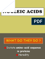 Nucleic-Acids.ppt