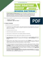 El-Reino-Monera-Bacterias-para-Segundo-de-Secundaria (1).doc