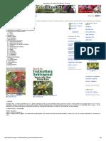 Agricultura. El Cultivo Del Plátano