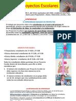 Proyectos Escolares (Instructivo- Cientifico)