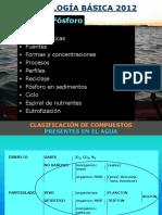 CLASE5-FOSFORO(2012)