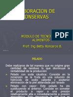 VII_TRATAMIENTO_TERMICO_elaboracion_de_conservas.ppt
