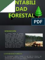 Contabilidad Forestal -Julio 2019