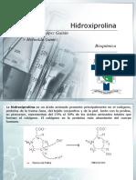 Hidroxiprolina.pptx