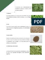 plantas medicinales 2.docx