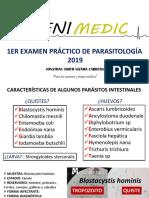 1ER-PRÁCTICO-DE-PARÁSITO.pdf