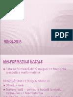 02_Rinologia__Malformatii_CS_Traumatisme.ppt