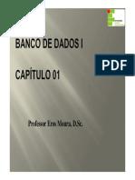 bd1_01.pdf