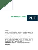 METODOLOGIA CAMEL(mibanco).docx