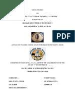 331023910 Marketing Strategies of Patanjali Ayurved