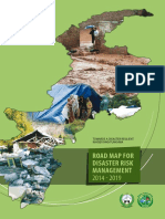 drm_road_map_2014-19.pdf