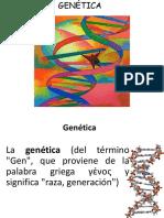 Terminos Genetica Sin Conceptos