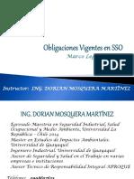 Obligaciones Vigentes en SSO