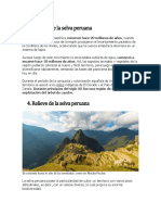 Historia de La Selva Peruana