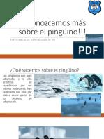 APOYO CLASE 90 PAC LENGUAJE INFORMACIÓN SOBRE EL PINGÜINO.pptx