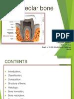 Alveolar Bone Dr Deepak