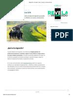 Migración_ Concepto, Tipos, Causas y Consecuencias