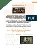 Chamanismo Integral Online Extendido 2019