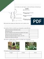 Urinario Fauna Flora