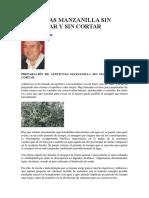 Aceitunas Manzanilla Sin Machacar y Sin Cortar