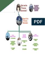 PROCESOS ELECTORALES - ESQUEMA