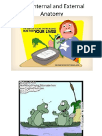 Internal and external anatomy Post pdf.pdf