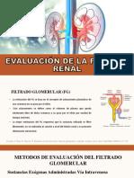 Evaluación de La Función Glomerular