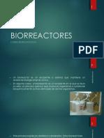 Biorreactores