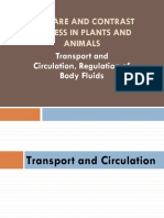 4. Chapter 4-Compare and Contrast-Transport etc..pptx