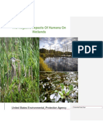 impact of humans on wetlands with tcv