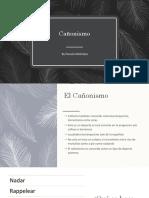 presentacion canonismo