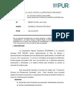 Informe Plantaciones Forestales-lima 2019