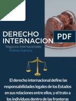 Sistema Int. Presentación (2) derecho internacional