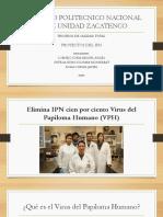 Proyectos IPN