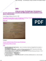 16. Lymphatic dranaige of thoracic organs. The diaphragm. The histology of the skin. Implantation. Formation and differentiation of the trophoblast. Early phases of placentation.pdf