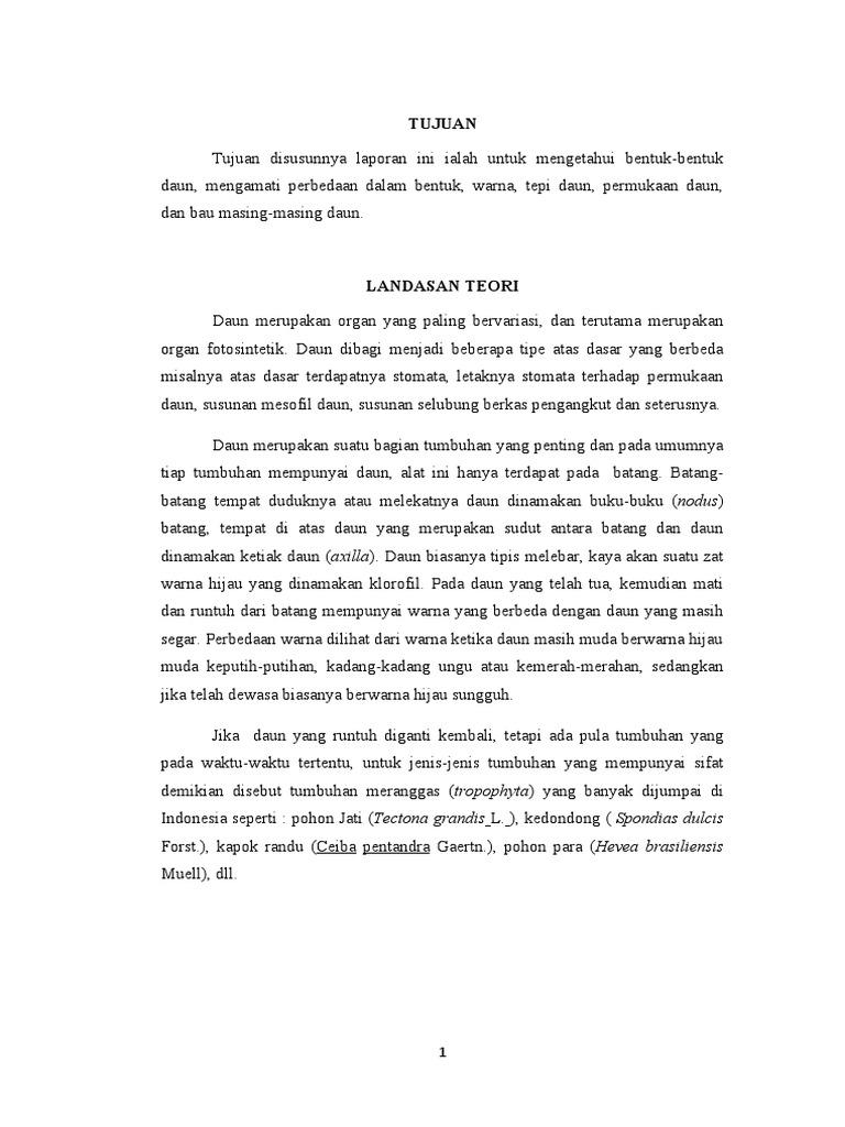 Laporan praktikum biologi daun ccuart Image collections