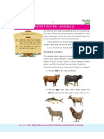 Concept Notes - Animals. Clas 1 Sci