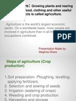 Agriculture Steps
