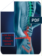 Low Back Pain Therapy Guide