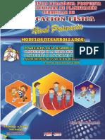 Modelo de Planificacion Anual Unidades y Seciones 2018