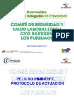 CHARLA INNSTRUCTIVA Delegados 1.ppt