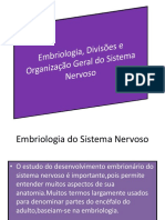 Embriologia Grupo
