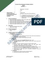 2013rppkimiax.pdf
