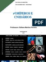Poriferos-e-Cnidarios.ppt