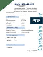 CV DIANA.docx