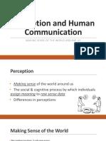 COM101 Lecture 3 Perception