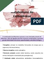 Aula Metabolismo Carboidratos